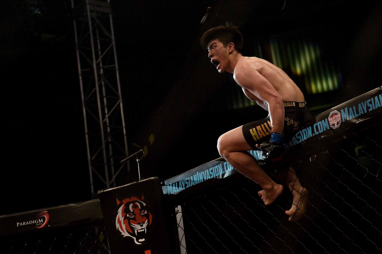 amateur mixed martial arts